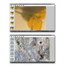 Motic Images Multi Focus