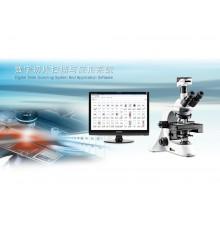专业分析软件
