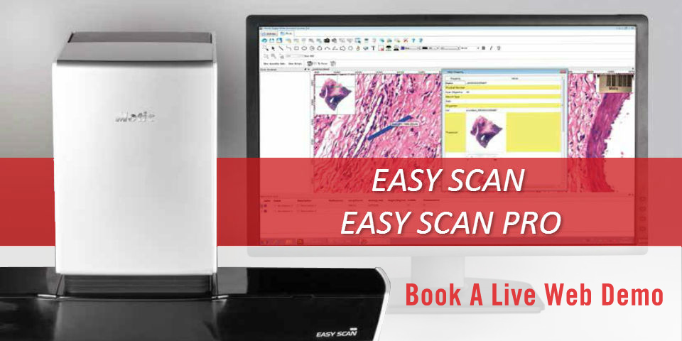 EASY SCAN