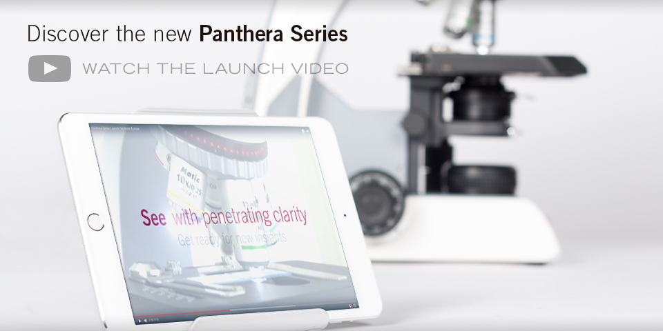 Panthera Video