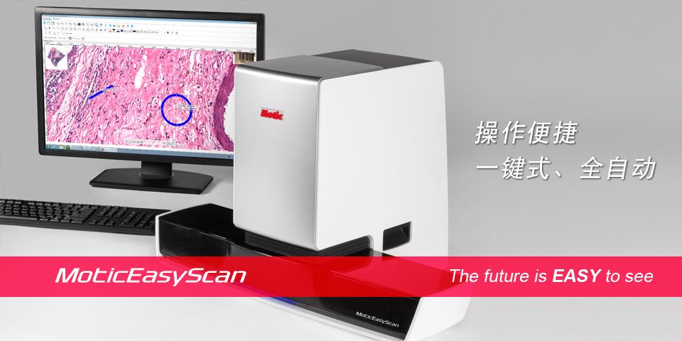 EasyScan